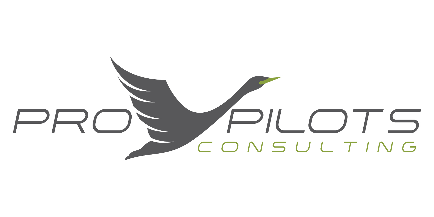 Pro Pilots Consulting